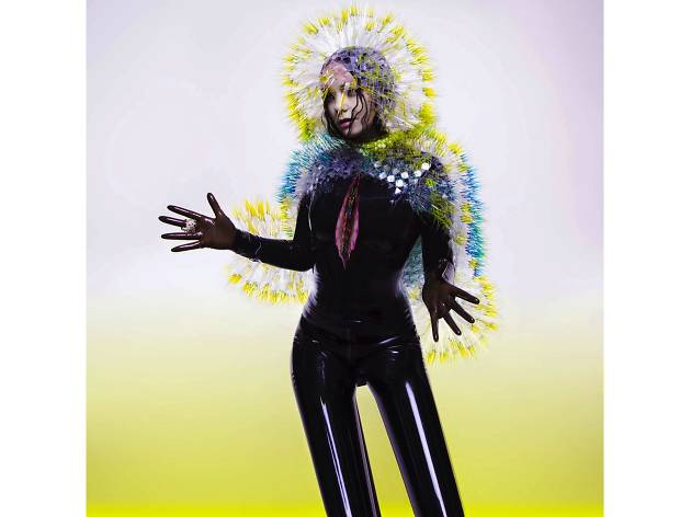Björk –<br>'Vulnicura'