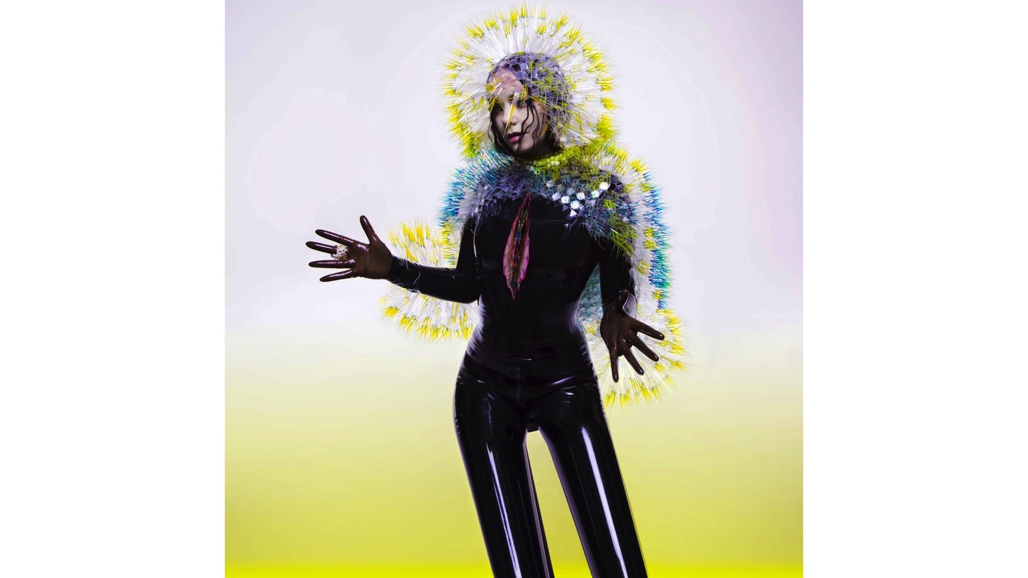 Björk – 'Vulnicura'