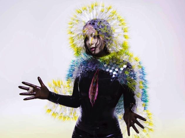 Björk – Vulnicura (crop)