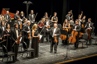 Classical Concert Chamber Orchestra