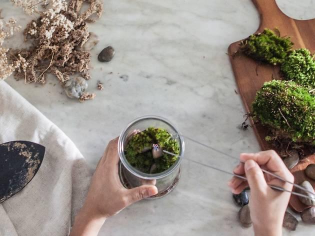 #TheMossyAffair: A Moss Terrarium Workshop