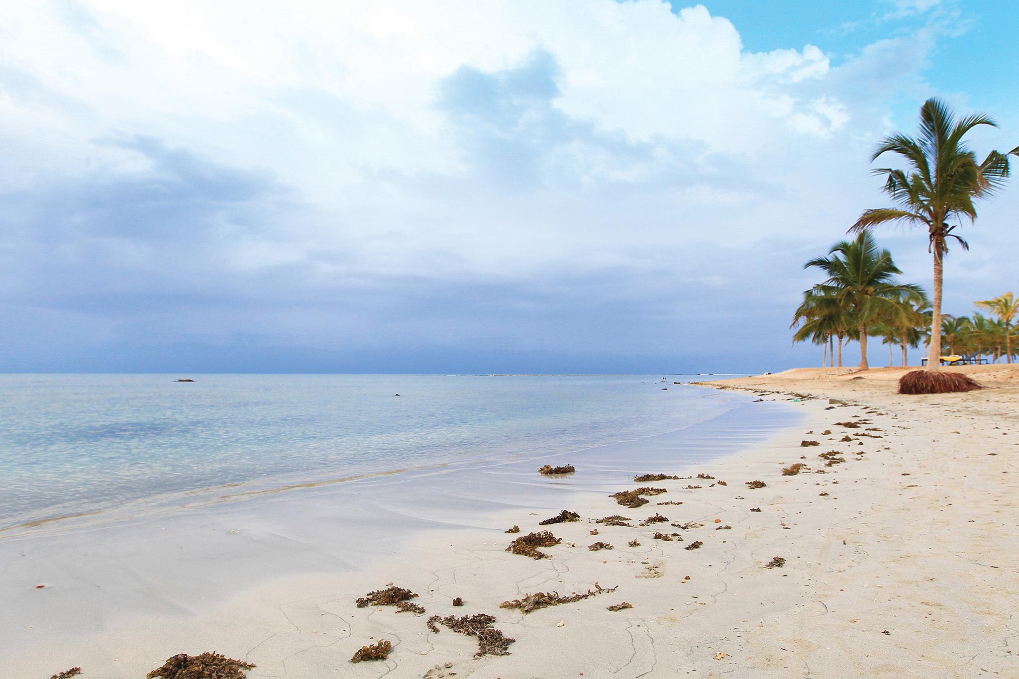 The best beaches in Sri Lanka