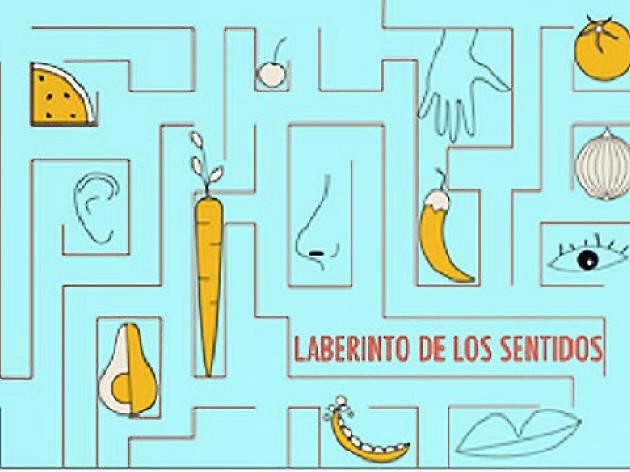 El laberinto de los sentidos. Proceso creativo del lenguaje perceptivo