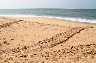 Rekawa Beach
