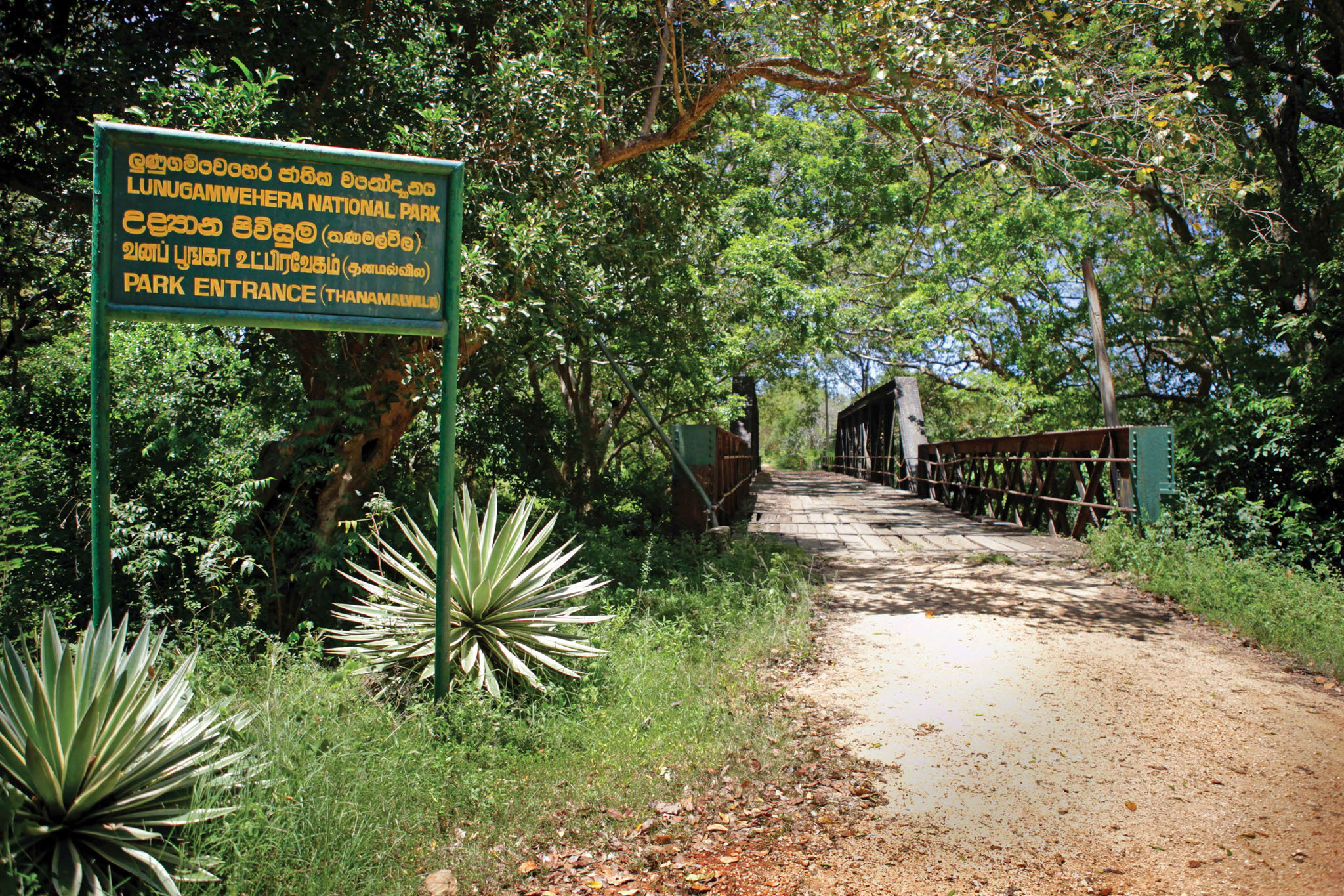 Lunugamvehera National Park