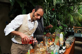 Plantasia press launch in Gin and Tonic Garden