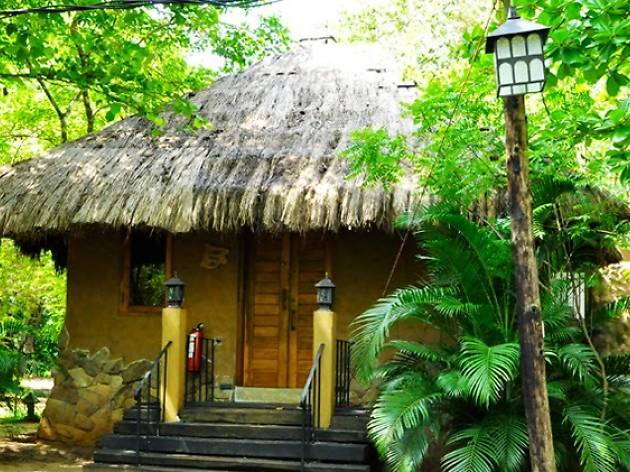 Elephant Safari Hotel