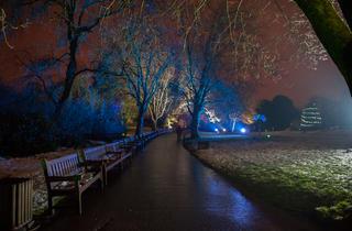 Electric Gardens - Glasgow Botanic Gardens