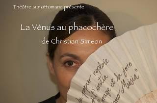 La Vénus au phacochère