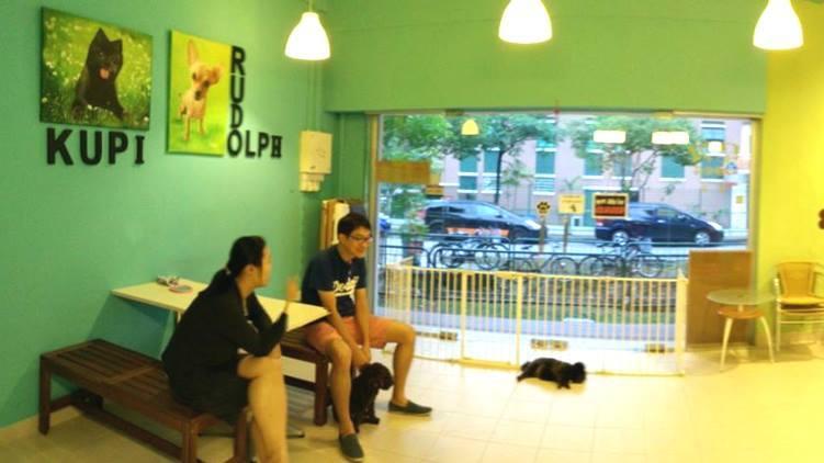 Dog Dot Cafe