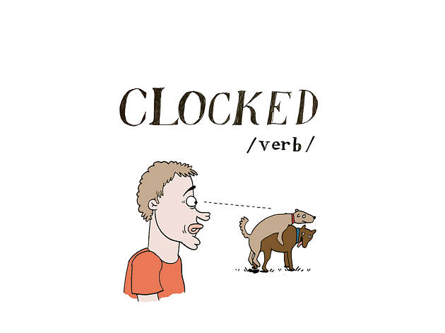 The A to Z of Northern slang - C is for Clocked