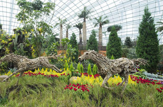 Gardens by the Bay – Spring Surprise