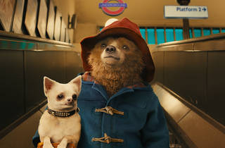 (Foto: Cortesía Paddington)