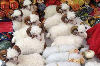 Bazarte Obregón  (Foto: Pamela Escamilla)