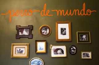 (Foto: Alejandra Gutiérrez )