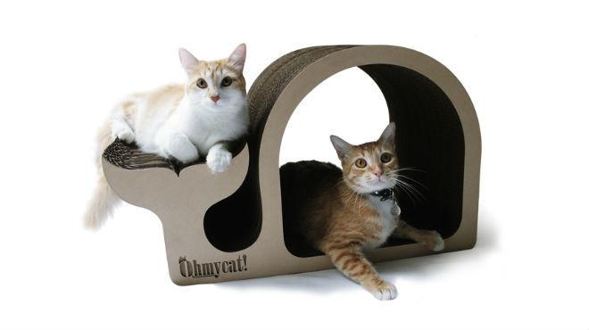 Ohmycat! Rascadores para gatos
