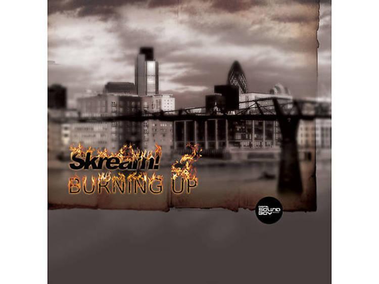 'Memories Of 3rd Base' – Skream (2009)