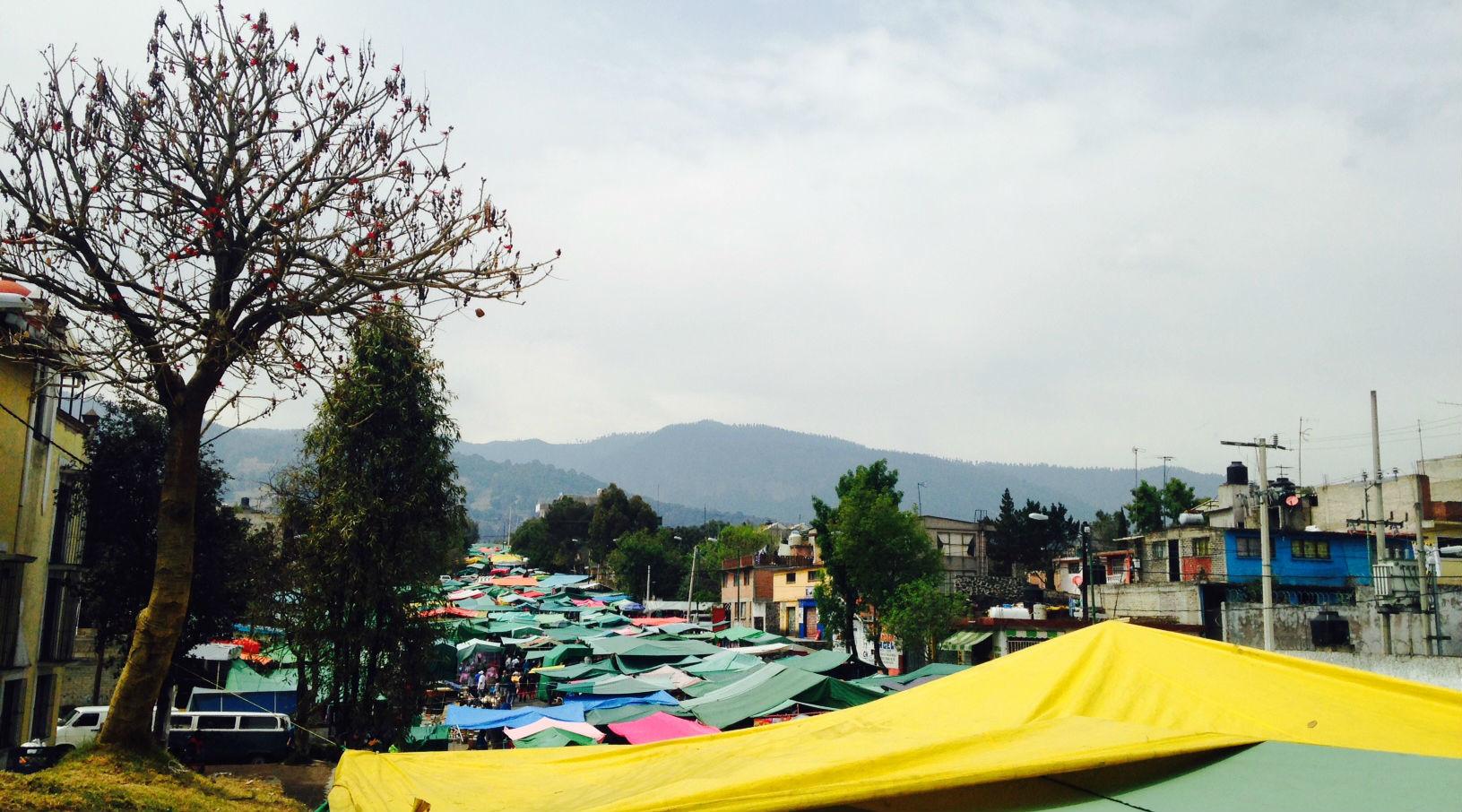 Mercado de la Calle 8