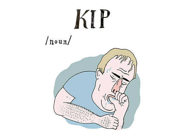 The A to Z of Northern Slang: Kip