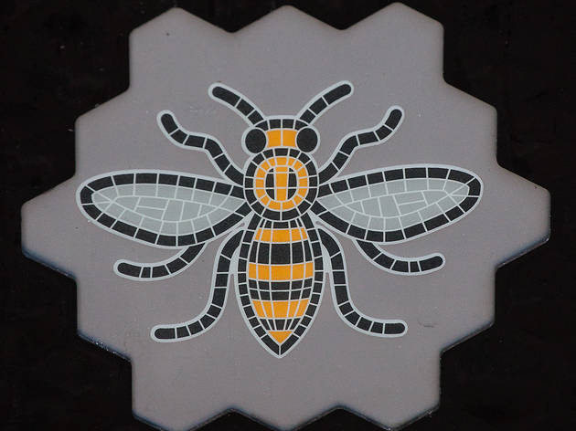 What's the buzz with Manchester's bees?