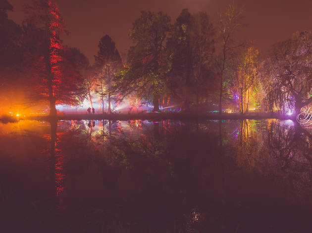 Enchanted Woodland, Syon Park