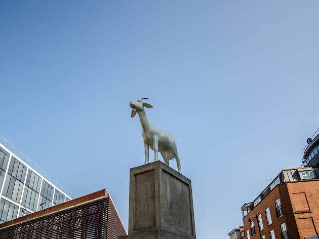 Spitalfields Market Goat