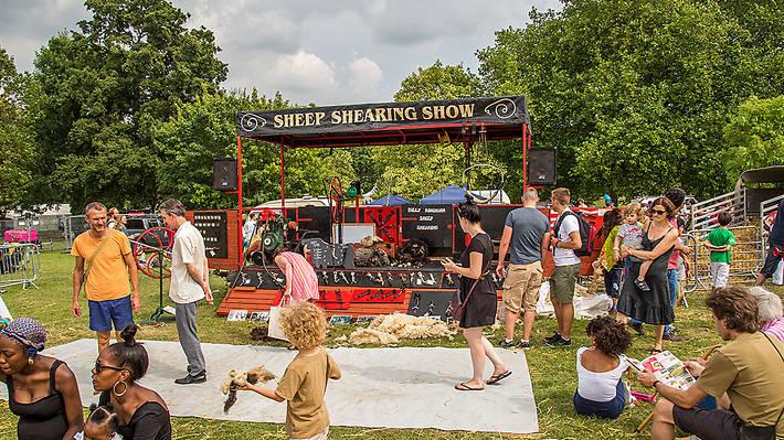 Lambeth Sheep Shearing Show