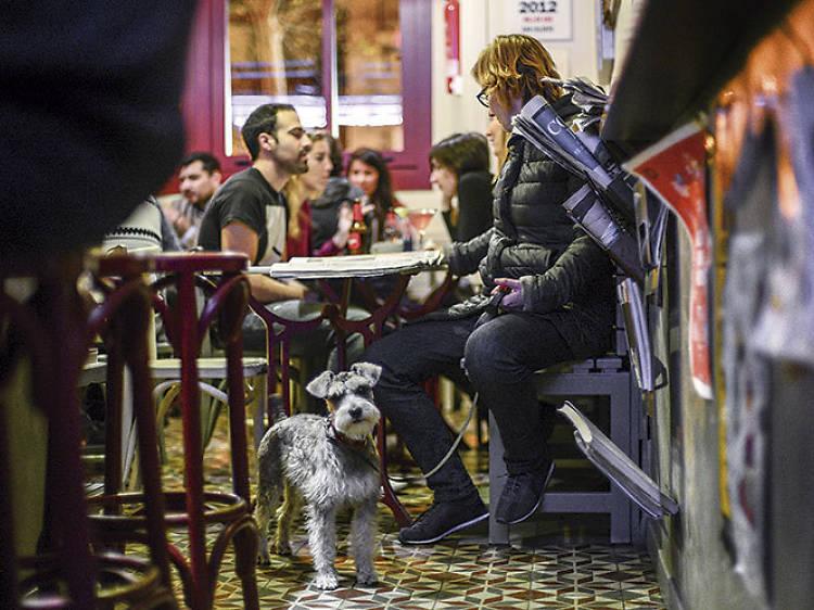 Bars i restaurants pet-friendly