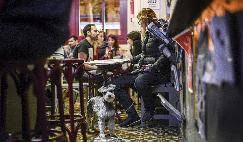 Bares y restaurantes para ir con perros