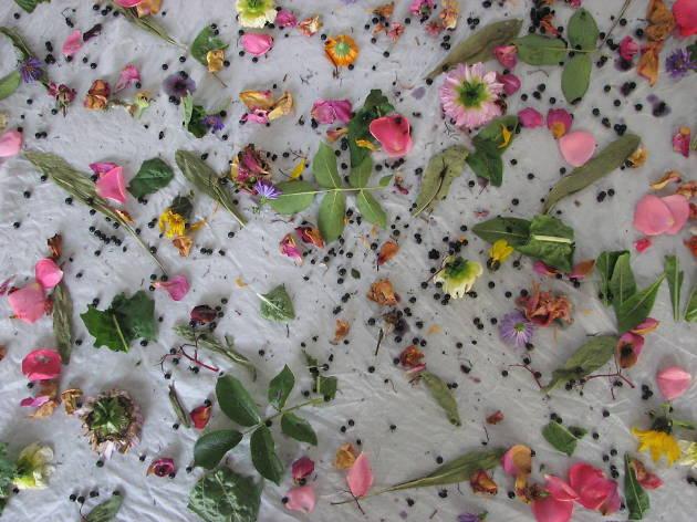 Natural Dyeing Workshop with Susie Wareham