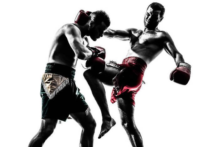 Equilibrium MMA