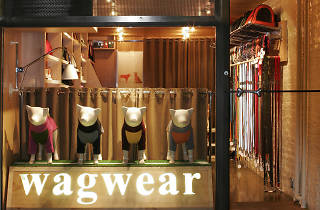 Wagwear