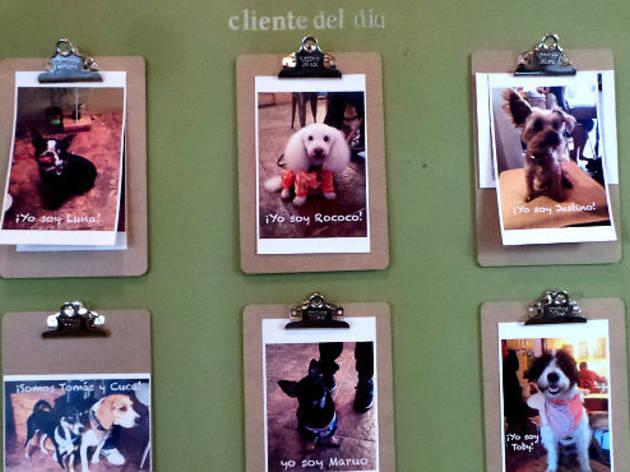 Greenway Café (Foto: Time Out México)