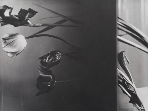 (Florence Henri, 'Composition Nature morte', c. 1931 / Collection particulière, courtesy Archives Florence Henri, Gênes / © Galleria Martini & Ronchetti)