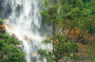 Dunhinda Falls is a waterfall in Badulla