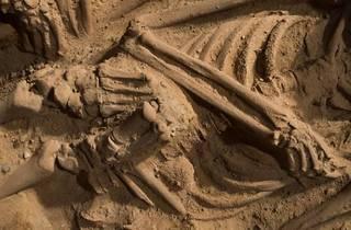 cimetière monoprix fouille