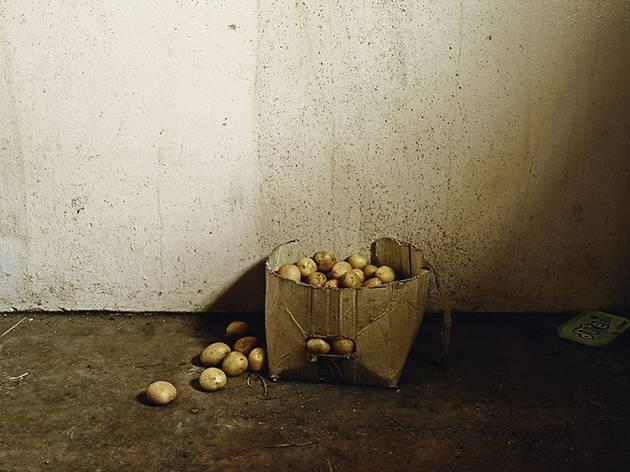 (Pieter Hugo, 'La Maison des Besters', Vermaaklikheid, 2013 / © Pieter Hugo / Courtesy Galerie Stevenson, Le Cap/Johannesburg et Yossi Milo, New York)