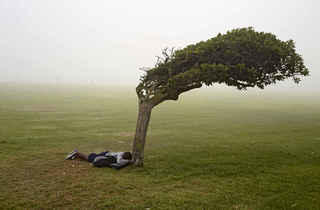 (Pieter Hugo, 'Green Point Common', Le Cap, 2013 / © Pieter Hugo / Courtesy Galerie Stevenson, Le Cap/Johannesburg et Yossi Milo, New York)