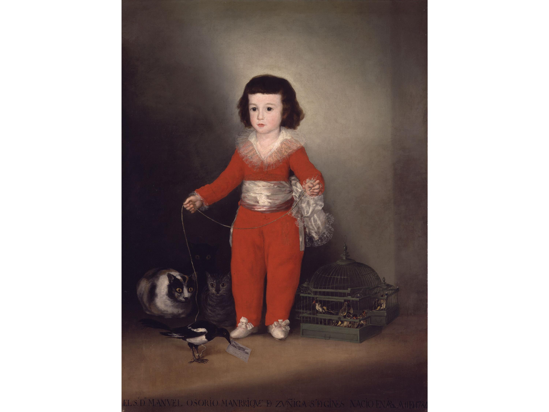 Manuel Osorio Manrique de Zuñiga (circa 1790s), Francisco Goya