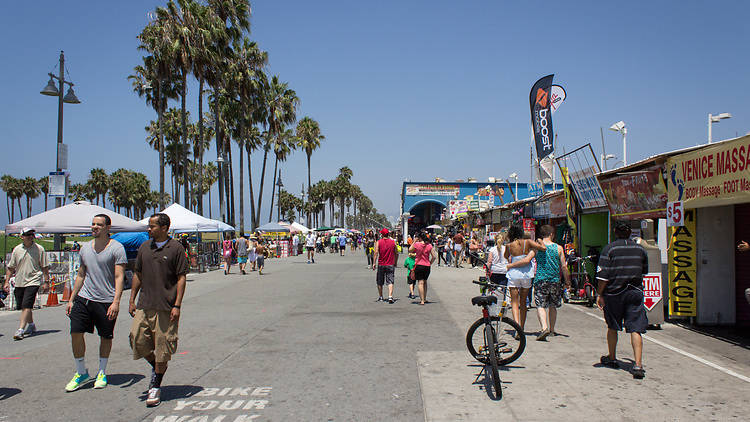 """The Venice Boardwalk is ideal for seeing bearded women, two-headed turtles and """"Treeman."""""""
