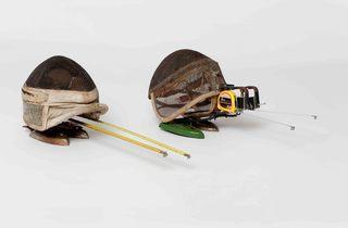 Escarabajos (© Inga Knölke)