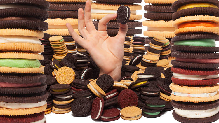 We tasted all the oreo flavors to determine which was best.