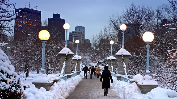 snowy boston