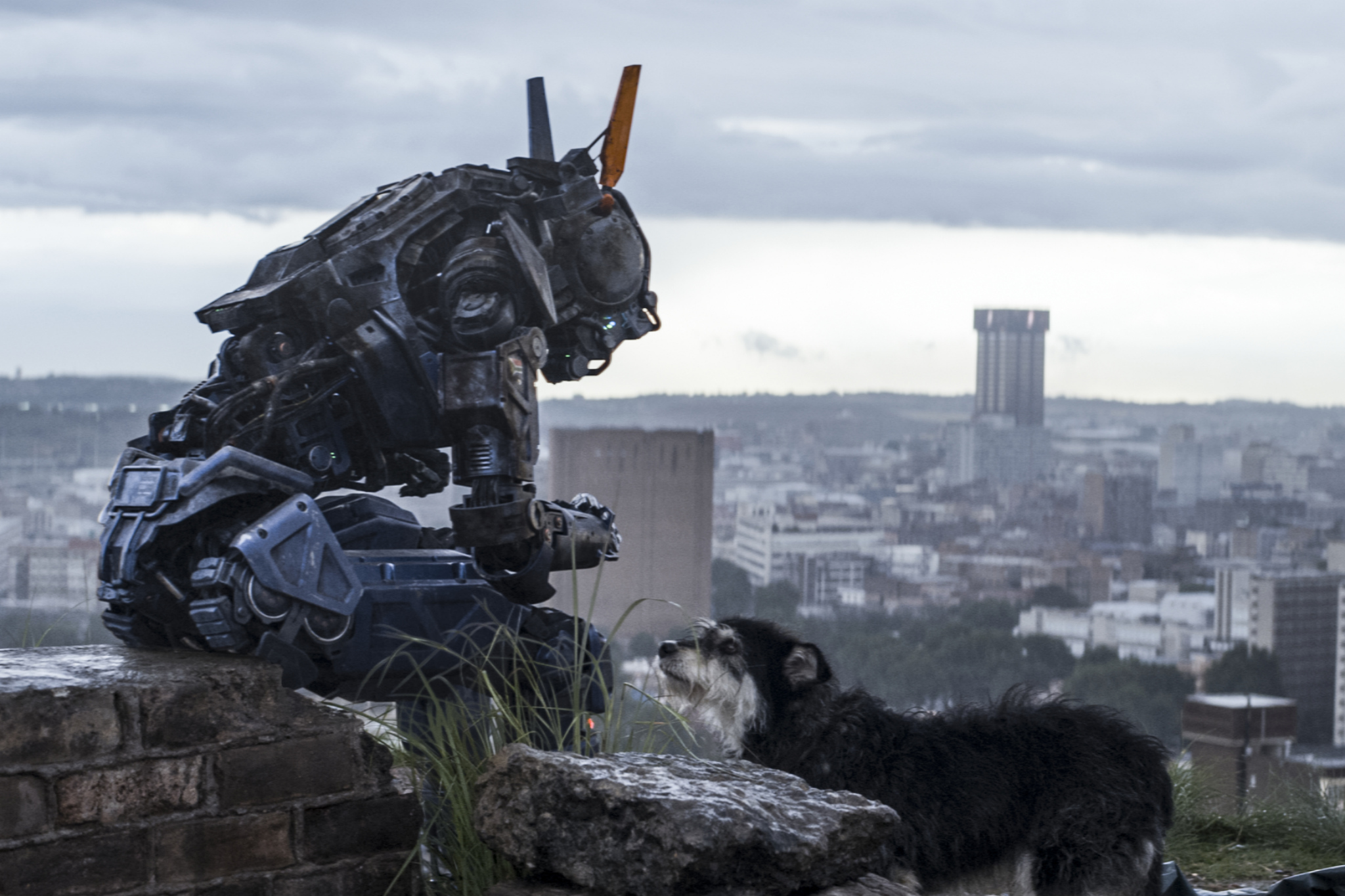 Ten things we love about Chappie