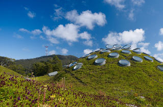 California Academy of Sciences (Photograph: Tim Griffith)