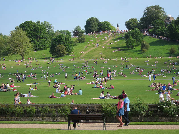 A busy Greenwich Park on a summer's day.