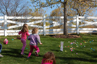 Easter Egg-Stravaganza at the Lincoln Park Zoo