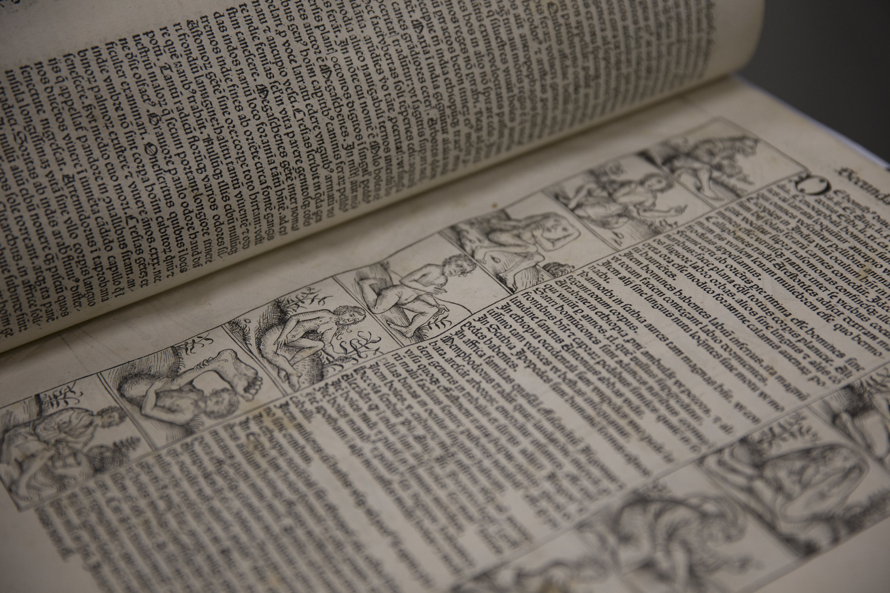 Central Library Nuremberg Chronicle