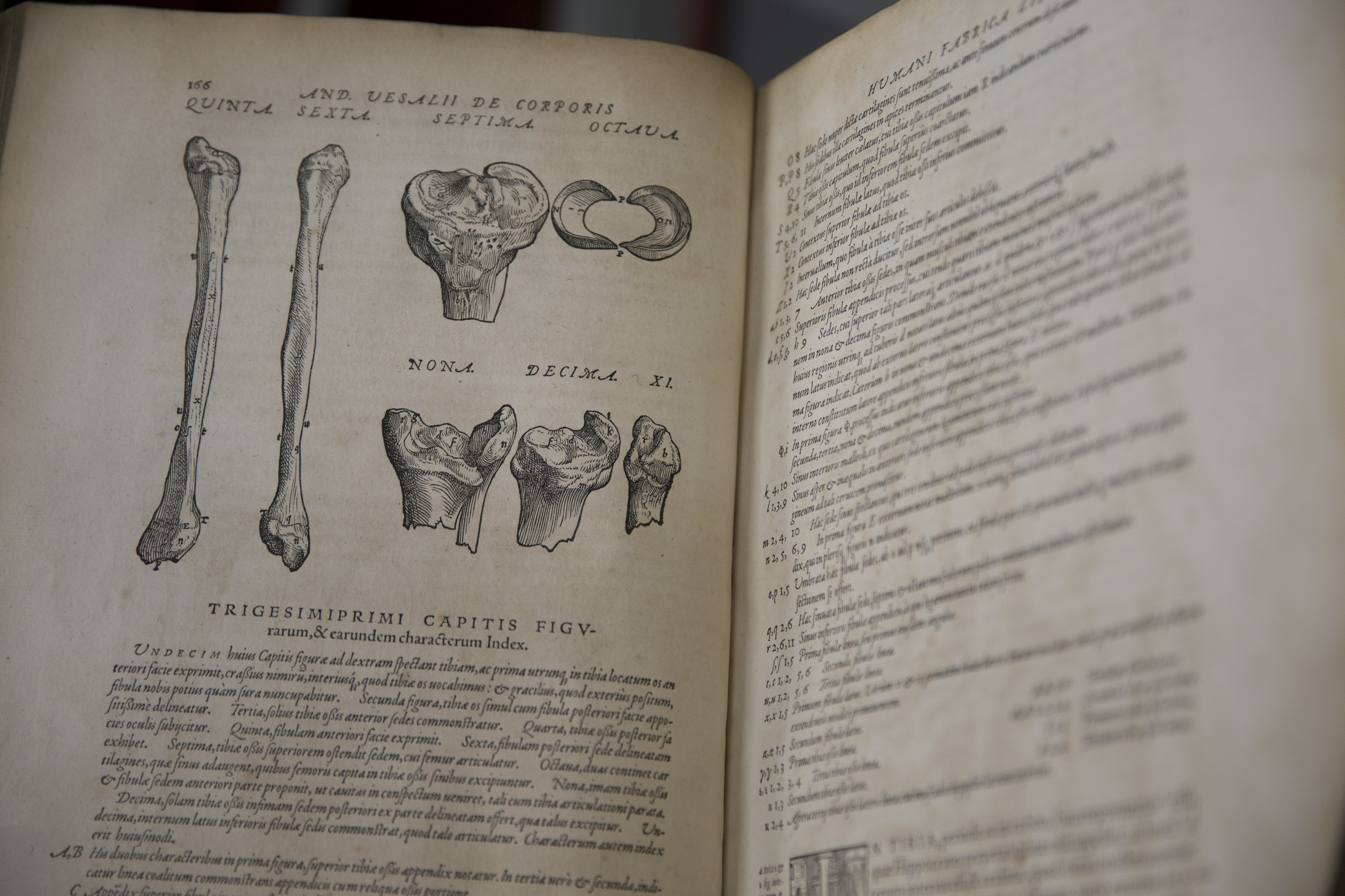Central Library Vesalius' anatomy