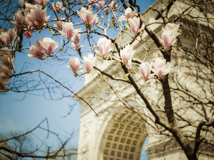The best spring date ideas in NYC
